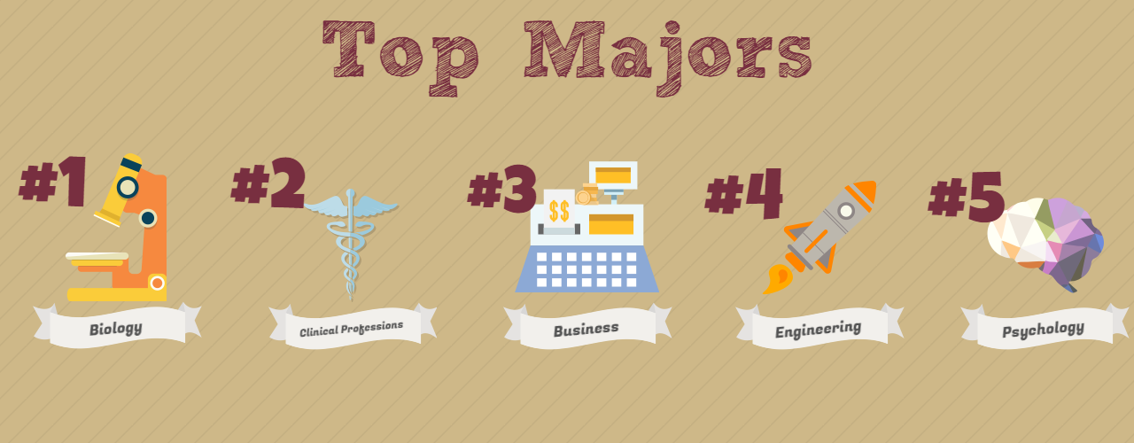 Top Majors. 1: Biology, 2: Business, 3: Pre-Health, 4: Nursing, 5: Engineering